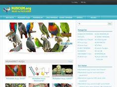Kuscum.org – Webdebul.Com.Tr Türkçe Siteler Portalı; Site Ekle, Add Url