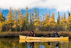Amy i Dave przez trzy lata zwiedzali Amerykę Północną - pieszo, kajakiem i psim zaprzęgiem pokonali 18 720 kilometrów