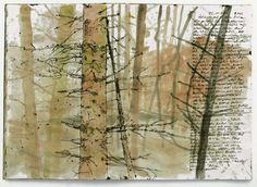 young spruce tree, guache and ink sketch,sketchbook forest diary Artist Journal, Artist Sketchbook, Art Journal Pages, Art Journals, Journal Entries, Art Aquarelle, Nature Sketch, Watercolor Trees, Watercolour