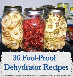 36 Fool-Proof Dehydrator Recipes 36 Fool-Proof Dehydrator Recipes When I First Heard About Dehydrating Food I Was Not Sure How Much I Would Use A Dehydrator, So I First Borrowed One From A Canning Food Preservation, Preserving Food, Canning Recipes, Raw Food Recipes, Canning Tips, Jar Recipes, Dehydrated Food Recipes, Freezer Recipes, Freezer Cooking