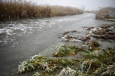 Hortobágy-Berettyó folyó befagyott szakasza/Fotó: MTI -Czeglédi Zsolt Ecsegfalva