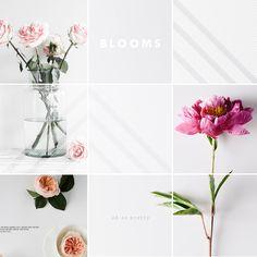 Oh So Pretty: Loving // Pretty Blooms