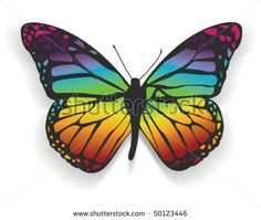 Rainbow Butterfly - stock vector