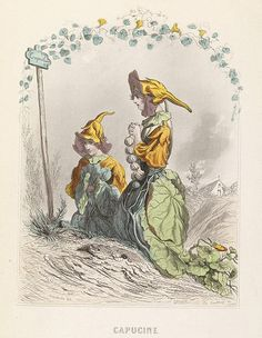 Capucine - Les Fleurs Animées - JJ Grandville