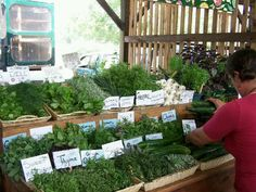 Ithaca's farmers market upper state Newyork