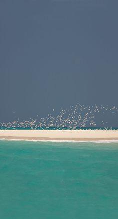 Quirimbas Archipelago, Cabo Delgado Province, Mozanbique