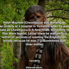 Follow @eNebriated to Get your Geek on! Always loved Chewbacca! @Nerdyshopaholic remember taking that pic next to the Chewbacca at wondercon? He was HUGE! Another awesome fact from @starwarsfactsC_ Size always matters #starwarsfacts #starwars #chewbacca #hansolo #lucasfilms #georgelucas #anewhope #returnofthejedi #empirestrikesback #chewie #starwarsfans #cool #fact #geek #geeky #nerdygirl #nerdy #geekfact Star Wars Meme, Star Wars Facts, Star Wars Film, Star Trek, Star Wars History, Star Wars Personajes, Star Wars Episode Iv, Star Wars Wallpaper, Star War 3