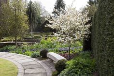 United_Kingdom_Gardens_Flowering_trees_York_Gate_515948_1280x853.jpg (1280×853)