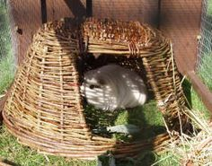 Rabbits need an entry and an exit to their hiding places.  How much better if they can also safely nibble it, and sit on top as a lookout post!  <3