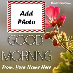 Happy Sunday Messages, Romantic Good Morning Messages, Latest Good Morning Images, Special Good Morning, Happy Morning Quotes, Good Morning Beautiful Images, Good Morning Picture, Good Morning Love, Good Morning Flowers