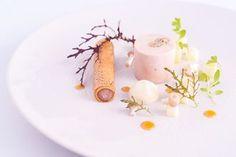 Michelin star starter recipes
