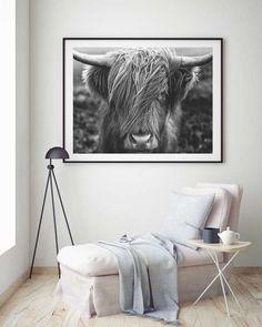 Schotse hooglander stier zwart wit foto interieuraccessoire