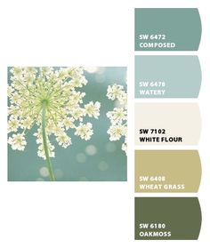 Paint colors from Chip It! by Sherwin-Williams - love the softness of this scheme