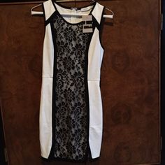 Cream black lace dress with 2 side V slits Uniquely designed dress with black lace overlay. Sleeves with back trim. Zip up back close. Fun & flirty v-shaped side slits at the bottom front. trades PayPal Pitaya Dresses