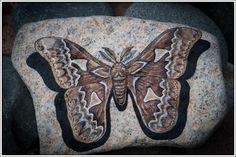Orizaba Silk Moth on Lake Superior stone w/ Display Stand by StonewingsbyOshi on Etsy
