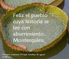 Feliz el pueblo cuya historia se lee con aburrimiento Montesquieu