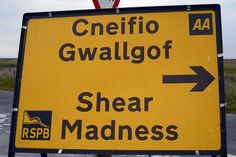 The funniest, most bizarre and downright inept mistranslations on Wales' highways released in book