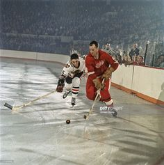 Detroit Red Wings Gordie Howe in action vs Chicago Blackhawks Matt Ravlich at Olympia Stadium. Ice Hockey Players, Nhl Players, Maple Leafs Hockey, Hockey Pictures, Red Wings Hockey, Hockey Memes, Detroit Sports, Sports Figures, National Hockey League