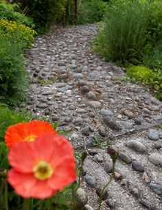 Trying to recreate Bastyr University's reflexology path to replace the broken concrete walkway in our backyard!