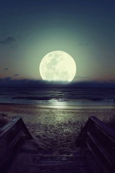 I am the moon. I am the moon. I am your universe. I am the moon, and I'll pull you. Luna Moon, Moon Moon, Moon Rise, Beautiful Moon, Beautiful World, Beautiful Places, Fuerza Natural, Cool Photos, Beautiful Pictures