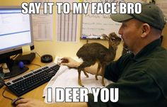 Funny+Memes+About+Animals | deer you funny animal meme1 Random Acts of HYDRA (25 Pics)