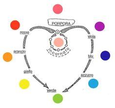 Cerchio dei colori del sistema pensante (l'Io)