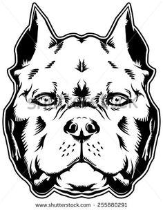 stock-photo-dog-pit-bull-american-bully-255880291.jpg (364×470)