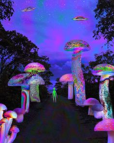 """@wholecelium posted to Instagram: Question: How long does it take for magic mushrooms to kick in? 🍄 Answer: It depends on a couple of factors… This is a challenging question to address in reality. With recommended mushroom doses ranging from a mildly trippy 1g to a 5g all-out-space-mission. Check our blog (link in bio) about """"How Long Does It Take For Shrooms To Kick In?"""" for more info.👇 #cosmicconsciousness #cosmicart #cosmicconnection #cosmicenergy #cosmicconsciousnesstri Hippie Wallpaper, Trippy Wallpaper, Mood Wallpaper, Trippy Quotes, Psychedelic Quotes, Hippie Trippy, Hippie Art, Psychadelic Art, Rave"""