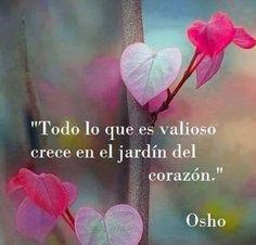 Osho...