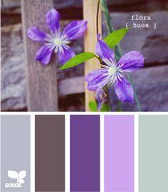 Flora Hues colour palette by Design Seeds Purple Color Schemes, Colour Pallette, Color Combos, Purple Colors, Purple Haze, Purple Grey, Light Purple, Purple Carpet, Carpet Colors