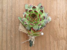 grooms boutonniere rustic wedding burlap succulents