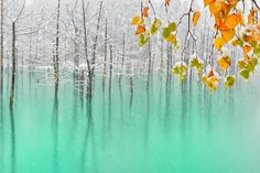 The Green Pond & First Snow,Hokkaido by Kent Shiraishi on 500px