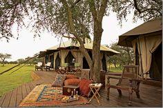 Safari at Sabora camp