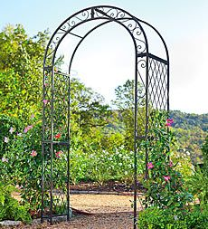 Powder Coated Iron Scrollwork And Lattice Garden Arbor