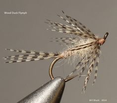 Wood Duck Flymph