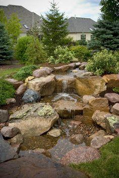 Backyard Waterfall with Evergreens