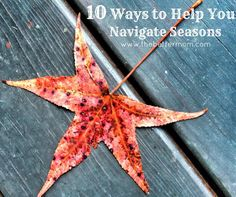 Are you in a hurry for your season to change? Learn ten ways to help you navigate your way and cultivate a heart of gratitude for the time of waiting.