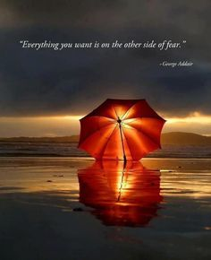 Everything you want is on the other side of fear. ~George Addair #entrepreneur #entrepreneurship #quote