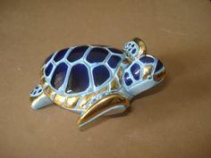 Sabia que a apolar tem uma coleção gigantesca de modelos de tartaruga, quer visitar nossa galeria? #apolarimoveis