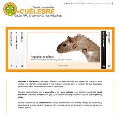 Diseño pag web animales el cuelebre