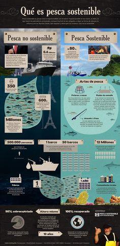 ¿Sabías lo que es Pesca Sostenible?
