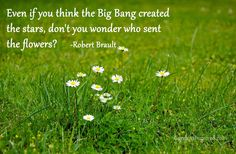 Even if you think the Big Bang created the stars, don't you wonder who sent the flowers? ~ Robert Brault