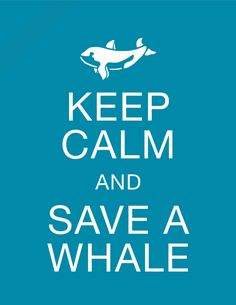 Keep Calm and Save a Whale - 8 x 10 Conservation Print, 100% of Profits goes to Sea Shepard - DONATE TODAY. $3.99, via Etsy.