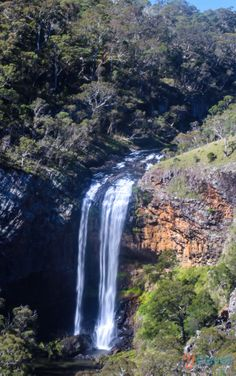 Ebor Falls - Things to See & Do in Armidale NSW