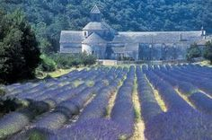 Avignon, France -- a great place for cooking lessons. #moremagazine.