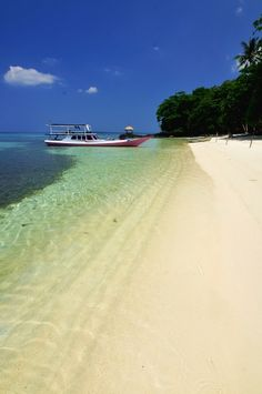 Planning for next year. Lets go! #KarimunJavaIsland