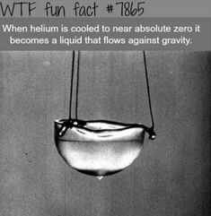 WTF Fun Facts is updated daily with interesting & funny random facts. New facts all day - every day! Wow Facts, Wtf Fun Facts, Funny Facts, Random Facts, Trivia Facts, Movie Facts, Did You Know Facts, Things To Know, The More You Know