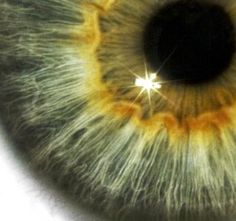 toma de cerca de un ojo humano - SCIENCE PHOTO LIBRARY/Getty Images