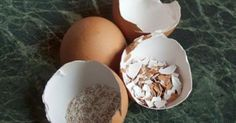 You Throw Away The Eggshells? After Reading This, You Will Never Do That Again!