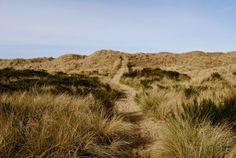 Bayocean Spit Hike  #OregonCoast #Oregon #OregonBeaches #HikeOregon